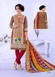 Printed Cotton Salwar, Dupatta & Bottom - Multi Colour